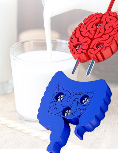 Связь головного мозга с кишечником